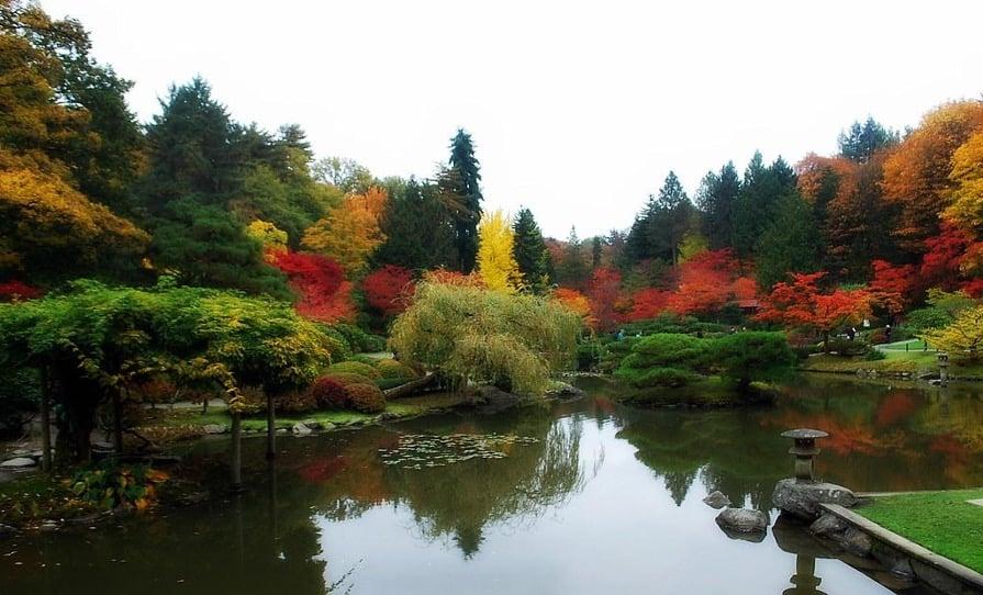Northwest garden in the fall